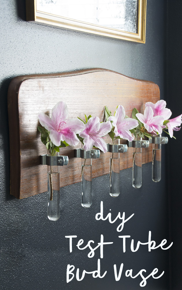 test-tube-bud-vase-hearts-and-sharts-diy-pin